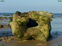 Paramoudras Pot Stones (Sassnitzer Blumentopf / flint krukke) found in Beeston Regis Beach